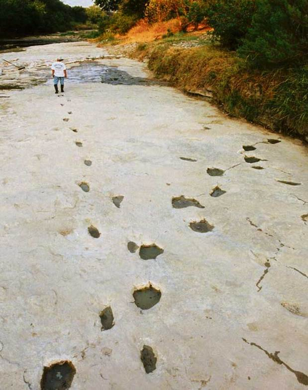 Paluxy footprints